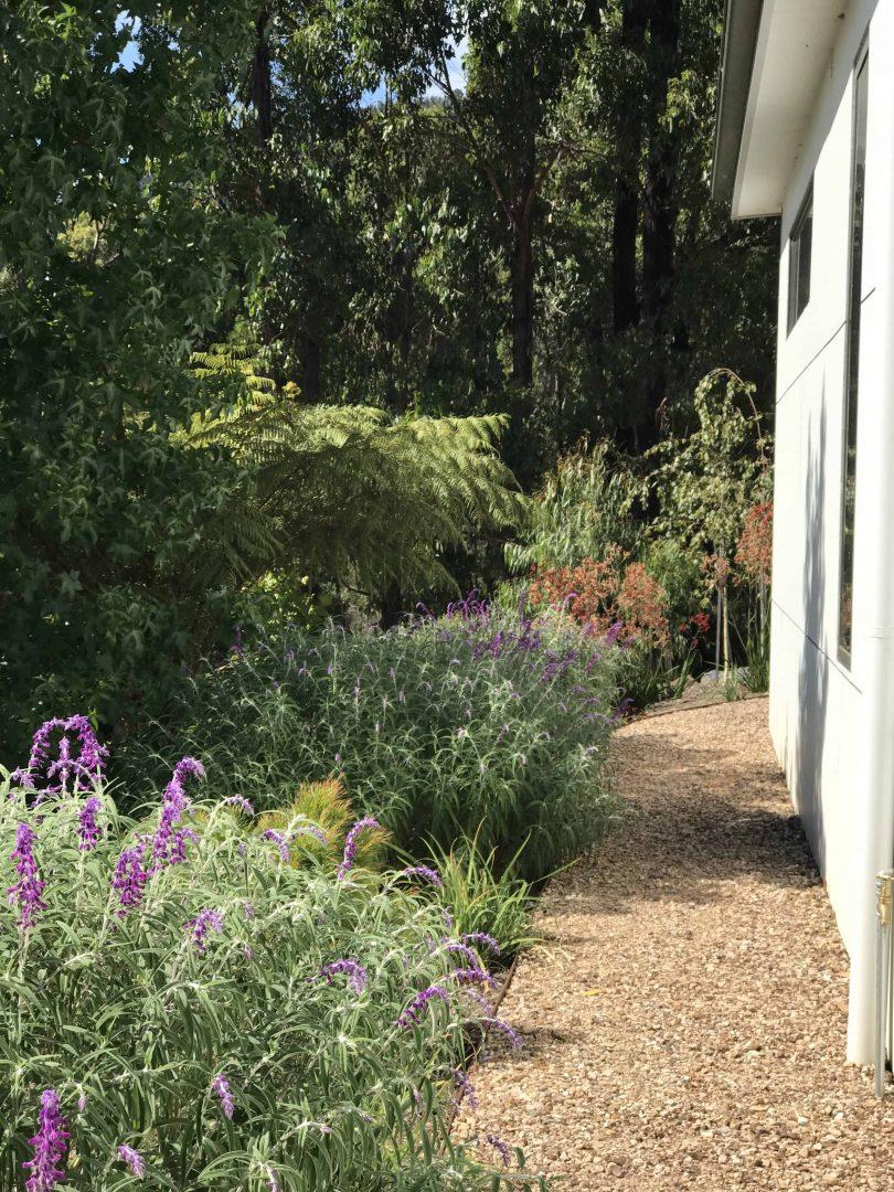 Rocky path in bushland setting by Cally Sinclair Garden Designs.